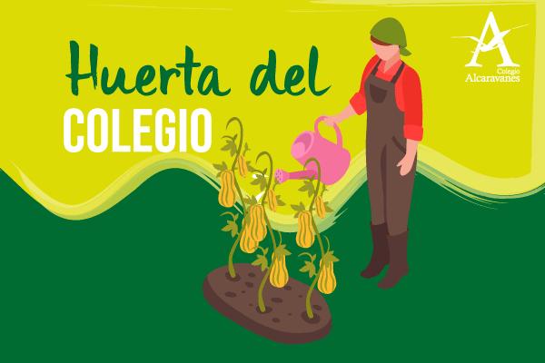 Huerta del Colegio Alcaravanes
